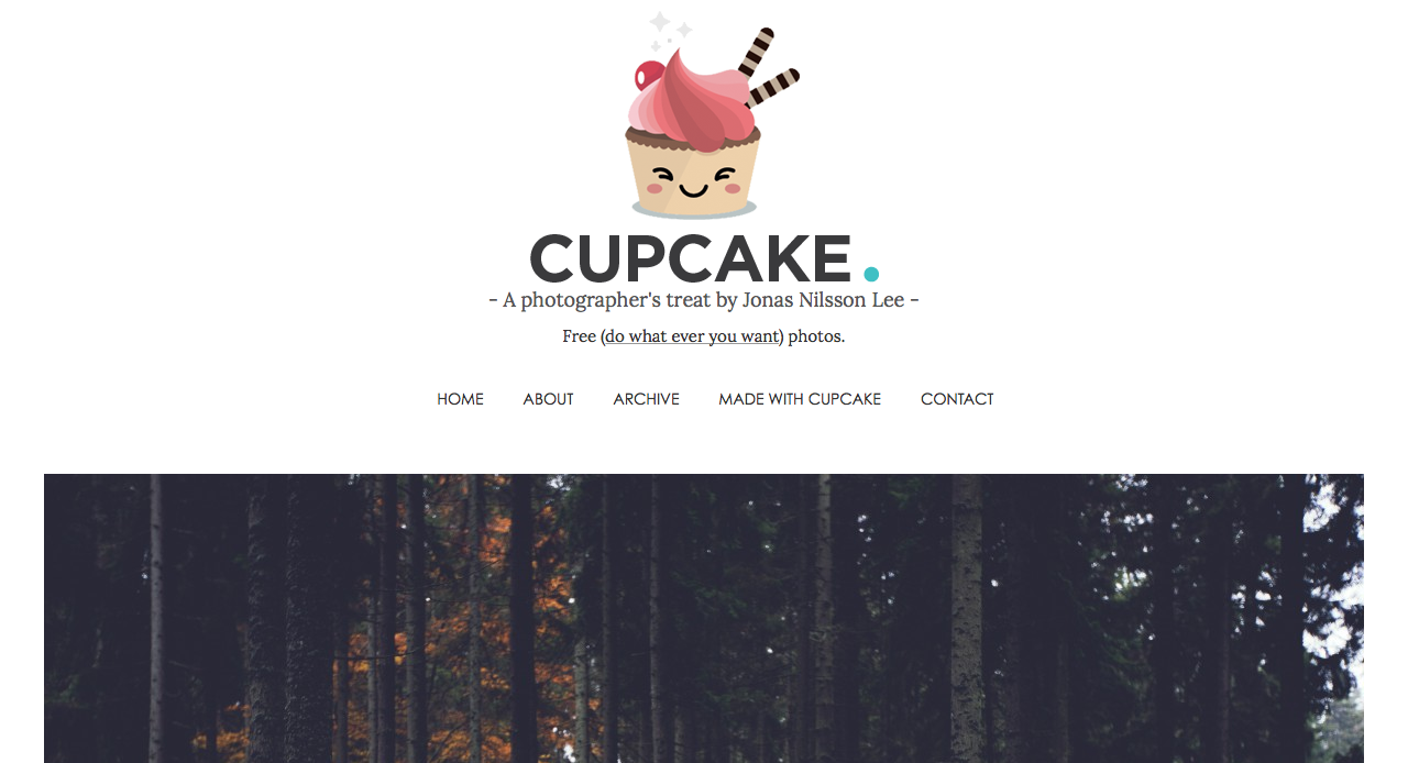 Cupcake  - A photographer's treat by Jonas Nilsson Lee -